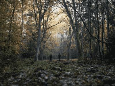 Zwei Jäger gehen in einem Wald spazieren